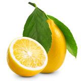 Lemons Stock Photography