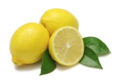 Free Lemons Royalty Free Stock Image - 6430866