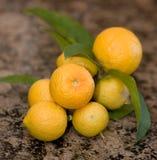 Lemons. Lemon arrangement on granite top Royalty Free Stock Photo