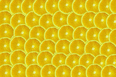 Lemons. Lemon pattern Royalty Free Stock Image