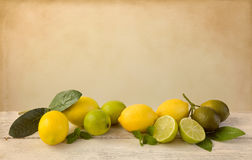 Free Lemons And Limes On Vintage Table Stock Photo - 97798270
