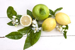 Lemons and apple with blossoms. Lemons and apple composition with lemon blossoms on a rustic wooden board stock image