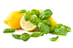 Lemons and basil leaves Stock Photography