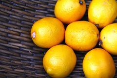 Lemons in basket Royalty Free Stock Image