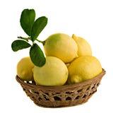 Lemons in basket Royalty Free Stock Photography