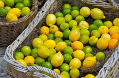 Lemons in a basket Stock Photos