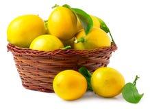Lemons in basket isolated on white Stock Image