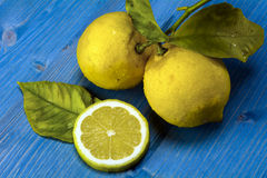 Lemons on a blue wood Stock Photography