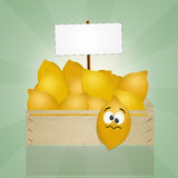Lemons box Stock Photography