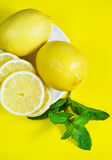 Lemons and branch of mint Royalty Free Stock Photo