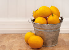 Lemons in a Bucket with room for text Stock Photo