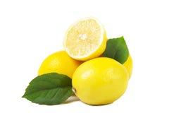 Lemons Stock Image