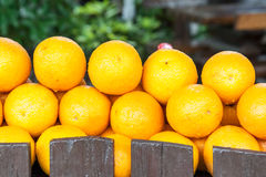 Lemons on a counter of shop Royalty Free Stock Photo