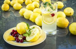 Lemons & Cranberrys. Lemons and  Sliced lemons & Cranberryson on a outdoor glass table with reflexion Stock Photography