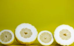 Lemons cut on yellow background. Different type of lemons cut in half on acid yellow background stock image