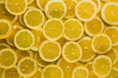 Lemons cuted background stock images