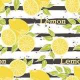 Lemons on dark gray stripes. Horizontal brush strokes seamless pattern. Vector illustration royalty free illustration