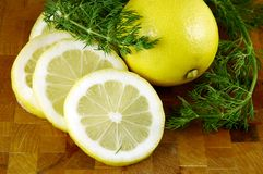 Lemons and Dill Stock Photos