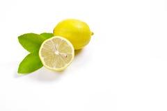 Lemons displayed on a white background Royalty Free Stock Image