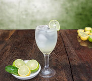 Lemons. Drinking lemon water every day offline Royalty Free Stock Images