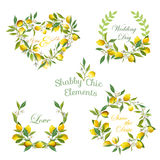 Lemons, Flowers, Leaves Banners and Tags. Floral Wreath Stock Image