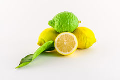 Lemons. Fresh lemons yellow and green on white background Stock Images