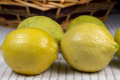 Lemons in front of a wicker basket. Several lemon fruits with yellow and green rind in front of a wicker basket, on a kitchen countertop with absorbent white royalty free stock photography