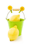 Lemons in green bucket on white Stock Photos