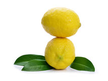 Lemons with green leaf Royalty Free Stock Photo