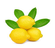 Lemons with green leaves Stock Photos
