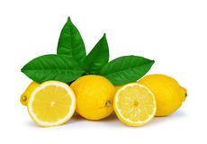 Lemons with green leaves Stock Photography