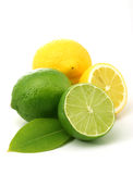 Lemons and green limes. Close up of lemons amd limes isolated over white Stock Photography
