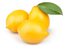 Lemons group leaf Stock Photos
