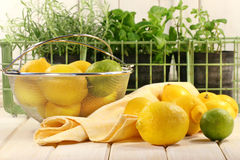 Lemons and herbs Stock Photos