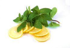 Lemons and herbs Royalty Free Stock Image