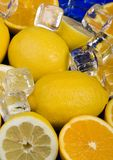Lemons with ice cubes Stock Image