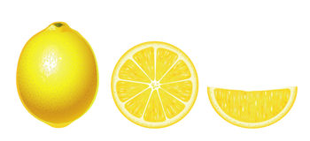 Lemons isolated (complex) royalty free illustration