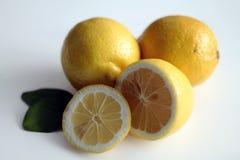 Lemons. Stock Images