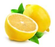 Lemons isolated on the white background Stock Images