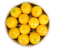 Lemons isolated on a white background. Lemons in wooden bowl isolated on a white background stock photography
