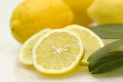 Lemons and leafes Royalty Free Stock Photos