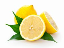 Lemons With Leaves. Fresh lemons with leaves on white background Stock Images