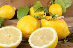 Lemons with leaves and flowers Royalty Free Stock Photos