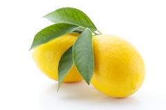 Lemons with leaves isolated. On white Stock Photos