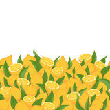 Lemons and leaves seamless horizontal background. royalty free illustration