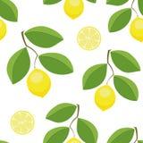 Lemons leaves seamless vector pattern. Lemons leaves and slices seamless vector pattern Royalty Free Stock Photo