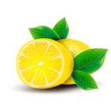 Lemons with leaves. Royalty Free Stock Photo