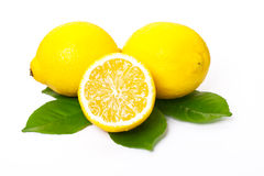 Lemons and lemon leaves Royalty Free Stock Photography