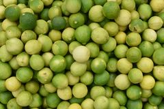Lemons. Picture taken at Hyderabad, India Royalty Free Stock Photo