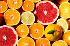 lemons lime Стоковое Фото